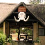 Kambaku Safari Lodge | Timbavati - Pride Lodges Tour Operators