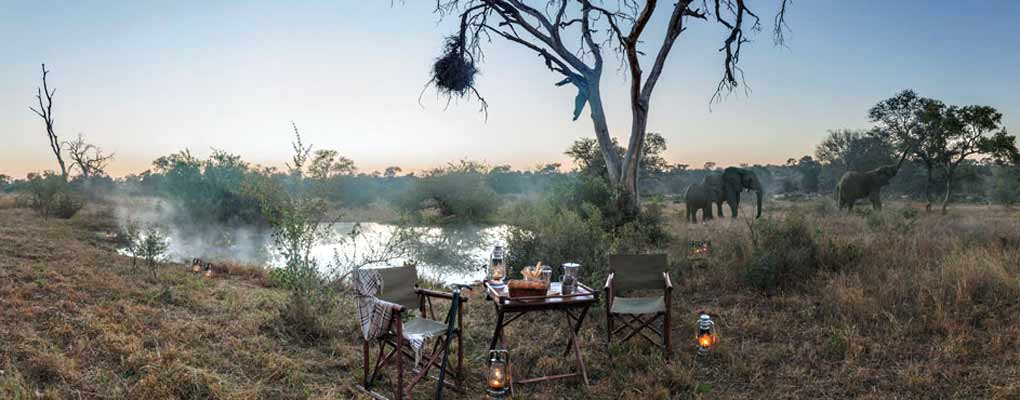 Kings Camp - Pride Lodges | African Safari Bookings