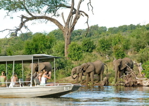 chobe-chilwero-lodge-boat-safari-02-590x390