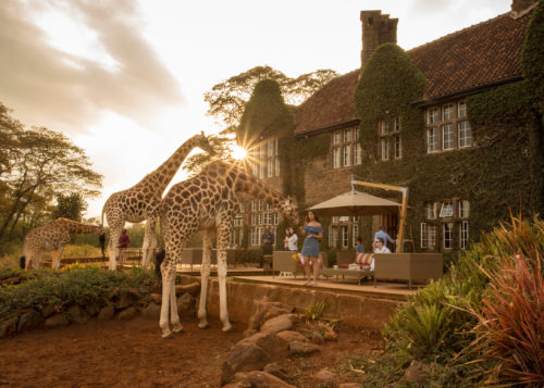 giraffe_manor_tea_time