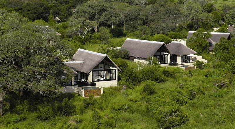 Lion Sands Ivory Lodge - Pride Lodges Safari Bookings