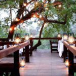 Londolozi Tree Camp - Pride Lodges Accommodation Bookings