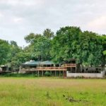 Nottens - Pride Lodges | African Safari Bookings South Africa